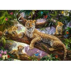 Leopardy 1000p