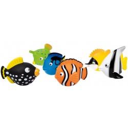 Striekacie zvieratká, ryby