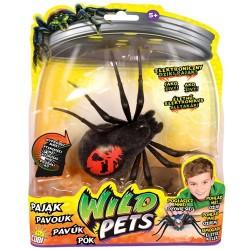 WILD PETS Pavouk série 2 (4 druhy)