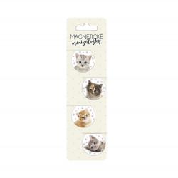 Magnetické minizáložky - Mačiatka