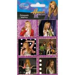 Aršík - Hannah Montana (malý)