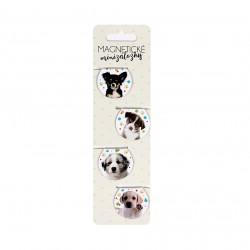 Magnetické minizáložky - Psíky