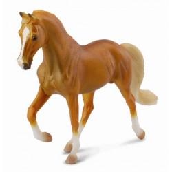 Tennesse jazdecký kôň žrebec zlatý Palomino