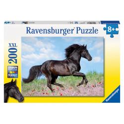 Čierny žrebec, 200 dielikov