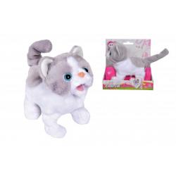 CCL Mačička