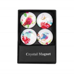 ALBI Krystalové magnetky - kruhy ptáčci